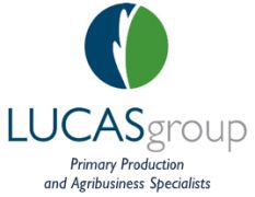 The Lucas Group